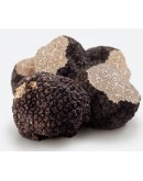 Noir frais truffes Bourgogne Uncinatum Qualité Supérieure
