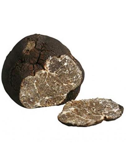 Truffe Noire Douce Lisse Macrosporum A-qualité Espèce truffe, Frais Tuber Macrosporum image