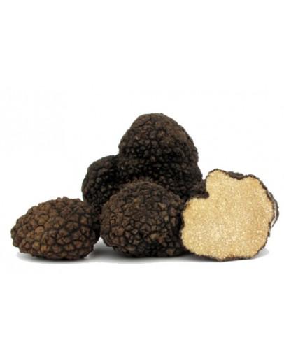 Truffes d été fraîches noires Qualité Supérieure Truffes Fraîches, Espèce truffe, Frais Tuber Aestivum image