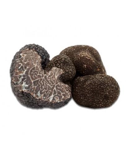 Truffes Noir frais Brumale B-qualité Truffes Fraîches, Espèce truffe, Frais Tuber Brumale image