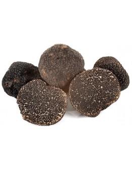 Truffes noires fraîches Tuber Melanosporum A-qualité