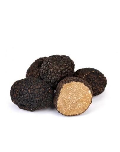 Truffes d été fraîches noires A-qualité