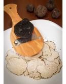 Truffes d été fraîches noires B-qualité