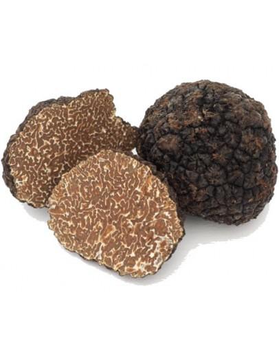 Noir frais Truffes Bourgogne Uncinatum A-qualité